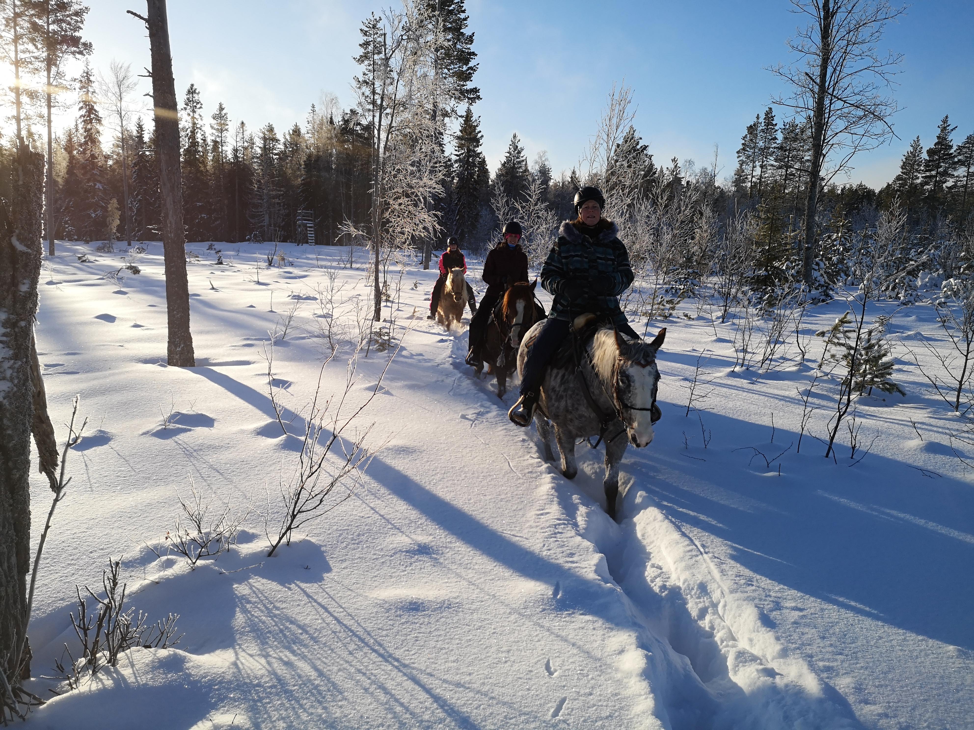 Trail ride winter